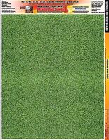 Innovative Multi-Scale SkinZ PhotoReal Decals- Green Grass Slot Car Decal #3833