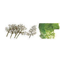 JTT Sycamore HO Scale Model Railroad Tree #92020