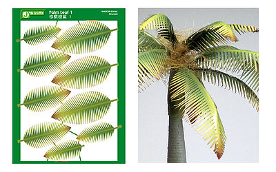 Js Work Models Multi-Scale Typical Palm Leaves (Colored Paper)