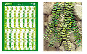 JsWorks Multi-Scale Vines (Colored Paper)