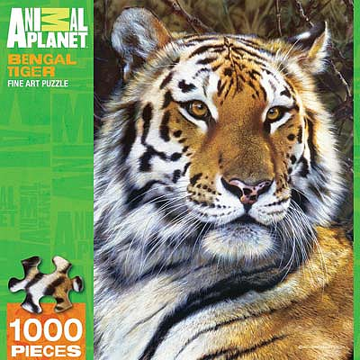 Masterpiece Bengal Tiger 1000pcs -- Jigsaw Puzzle 600-1000 Piece -- #71635