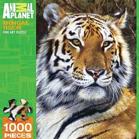 Masterpiece Bengal Tiger 1000pcs Jigsaw Puzzle 600-1000 Piece #71635