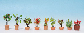 Noch Ornamental Plants in Flower Pots Kit #2 pkg(9) N Scale Model Railroad Accessory #14082