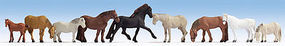 Noch Horses N Scale Model Railroad Figure #36761