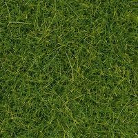 Noch Spring Meadow Grass Mat (44 x 29 x .6cm) Model Railroad Grass #400