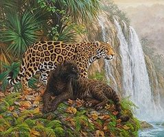 Plaid El Dorado (Leopards/Jungle) (20x16) Paint By Number Kit #21756