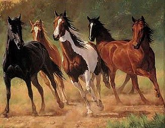 Plaid Paint By Numbers Home Run (Horses Running) (20''x16'') -- Paint By Number Kit -- #21798