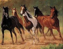 Plaid Home Run (Horses Running) (20x16) Paint By Number Kit #21798