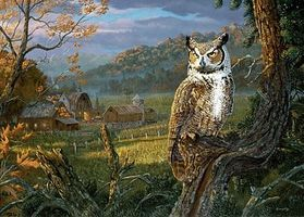 Plaid Edge of the Night (Owl Perched in Tree/Barn Scene) (20x16) Paint By Number Kit #21799