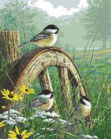 Plaid Meadows Edge with Songbirds (16x20) Paint By Number Kit #22036