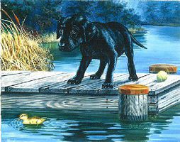 Plaid Forget the Ball (Lab Pup on Dock) (11x14) Beginner Paint By Number Kit #22057