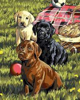 Plaid Puppy Clinic Paint By Number Kit #22079
