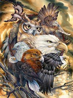 Plaid Sky Kings (Eagle/Owl Faces)(20x16) Paint By Number Kit #22082