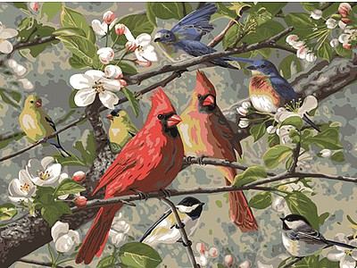 Plaid Paint By Numbers Songbirds in Cherry Blossom Tree Paint by Number (20''x16'')