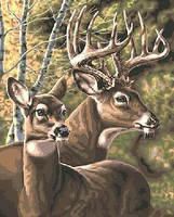 Plaid Deer Pair Paint by Number (20x16)