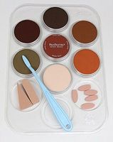 Panpastel Weathering Color Kit- Rust & Earth (7 9ml pan colors, tray, tools) Watercolor Paint #30701