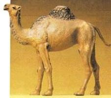 Preiser Standing Camel Model Railroad Figure 1/25 Scale #47531