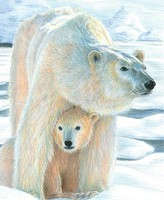 Polar Love (Bear with Cub)(8.75''x11.75'') Pencil By Number Kit #37365