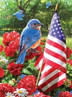 Patriotic Bluebird with American Flag (8.75''x11.75'') Paint By Number Kit #37396