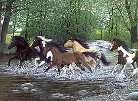 Royal-Brush Free Spirits (Galloping Horses/Stream)(11.25''x15.375'') Paint By Number Kit #5668