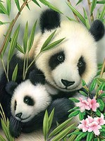 Royal-Brush Panda & Baby (8.75''x11.75'') Paint By Number Kit #5682