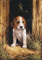 Royal-Brush Junior PBN Small Beagle Puppy Paint By Number Kit #pjs58