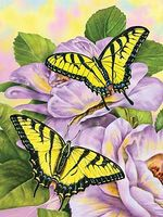 Royal-Brush JR PBN Swallowtail Butterflies Paint By Number Kit #pjs69