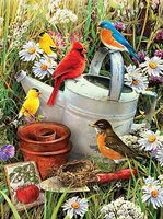 Royal-Brush JR PBN Garden Birds Paint By Number Kit #pjs71