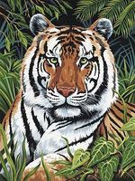 Royal-Brush JR PBN Tiger In Hiding Paint By Number Kit #pjs75