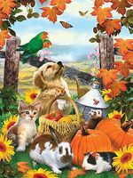 Royal-Brush JR PBN Autumn Festival Paint By Number Kit #pjs79