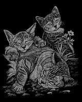 Royal-Brush Silver Foil Engraving Tabby & Kittens Scratch Art Metal Art Kit #silf13