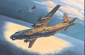 Roden 1/72 An12BK PPS Soviet Transport Aircraft