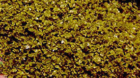 Scenic-Expr SuperLeaf Scale Model Leaf Flake 16oz Shaker - Moss Green Model Railroad Ground Cover #6142