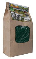 Scenic-Expr F&T Spruce Grn Coars 48oz