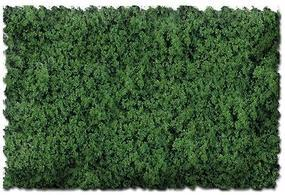 Scenic-Expr Scenic Foams & Ground Textures Grass Green Model Railroad Ground Cover #806c
