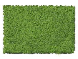 Scenic-Expr Scenic Foams & Ground Textures Fine Spring Green Model Railroad Ground Cover #810c