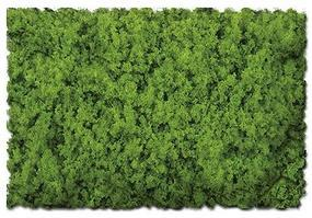 Scenic-Expr Scenic Foams & Ground Textures Coarse Spring Green Model Railroad Ground Cover #811b