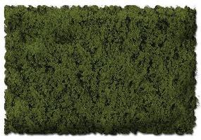 Scenic-Expr Scenic Foams & Ground Textures Coarse Burnt Green Model Railroad Ground Cover #813b