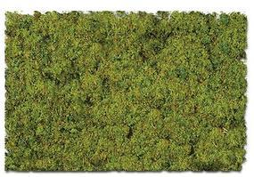 Scenic-Expr Scenic Foams & Ground Textures Farm Pasture Blend Model Railroad Ground Cover #886c