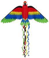 Skydog Rainbow Parrot 66 Single Line Kite #10032