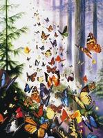 Sunsout Butterfly Woods 1000pcs Jigsaw Puzzle 600-1000 Piece #62077