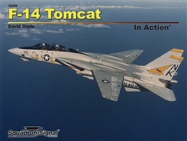 Squadron F-14 Tomcat in Action