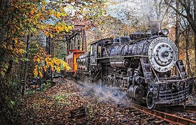 Train-Enthusiast Train's Coming 1000 pc