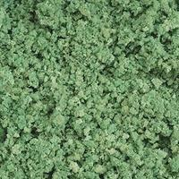 Timberline Mid-Summer Green Ground Cover Foliage (Coarse) Model Railroad Scenery #306