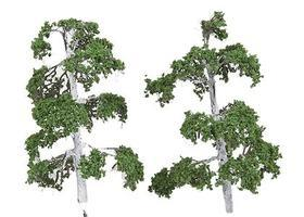 N-Scale-Arch Trees Silver Birch 6/ - N-Scale (6)