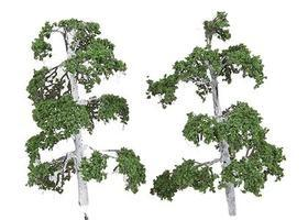N-Scale-Arch Trees Silver Birch 6/ - Z-Scale (6)