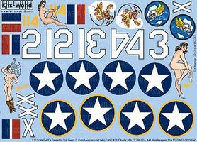 Warbird P40 Fifnella, Miss Memphis Plastic Model Aircraft Decal 1/32 Scale #132037