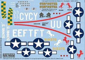 Warbird P51 Bonnie B, Gunfighter Plastic Model Aircraft Decal 1/48 Scale #148090