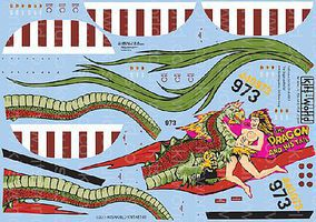 Warbird B24J Dragon & His Tail 43rd BG Plastic Model Aircraft Decal 1/48 Scale #148149