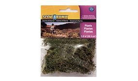 Woodland Plants Scene-A-Rama (2oz 57g) Model Railroad Grass Earth #4185